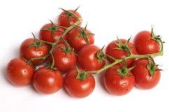 Tomates juteuses Photographie stock