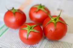 Tomates juteuses mûres rouges avec la queue de cheval verte dans le style rustique sur le journal Image stock