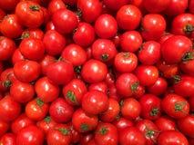 Tomates légumes Fragment d'une boutique de fruits et légumes Images libres de droits