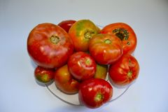 tomates, légumes rouges Images stock