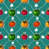 Tomates LUMINEUSES. légumes savoureux Images libres de droits