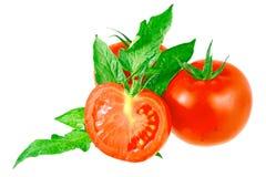 Tomates luxúrias com folhas verdes. Isolado Imagens de Stock Royalty Free
