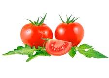 Tomates luxuriantes Image libre de droits