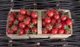 Tomates mûres colorées fraîches d'héritage d'automne dans le panier au-dessus du fond en bois, vue supérieure, composition horizo photographie stock libre de droits