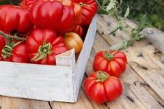 Tomates mûres dans une boîte en bois dans le jardin photo stock