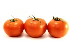 Tomates mûres rouges juteuses Image libre de droits