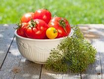 Tomates mûres fraîches Images libres de droits