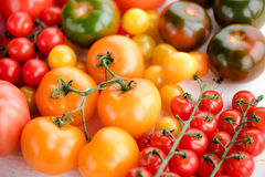 Tomates mûres fraîches Photographie stock libre de droits