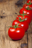 Tomates mûres fraîches dans une rangée Photographie stock libre de droits