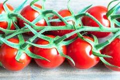 Tomates mûres fraîches de vigne avec une profondeur de champ sur un bois Photo libre de droits
