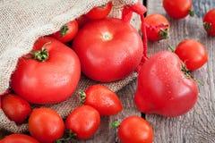Tomates mûres fraîches sur la table en bois Photographie stock libre de droits