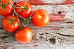 Tomates mûres fraîches sur la vigne sur une étagère du marché Photographie stock
