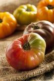 Tomates mûres organiques fraîches d'héritage Images libres de droits