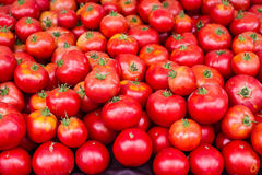 Tomates mûres rouges au marché Photos stock