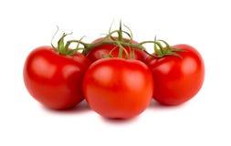 Tomates mûres rouges avec la branche verte images stock