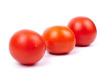 Tomates maduros Imagen de archivo