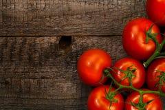 Tomates maduros Fotografia de Stock Royalty Free