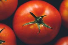 Tomates maduros Imagen de archivo libre de regalías