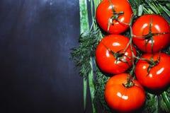 Tomates maduros com as ervas no fundo preto fotos de stock