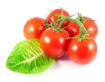 Tomates maduros con la hoja de la ensalada Foto de archivo