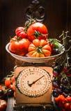 Tomates maduros da exploração agrícola em escalas do vintage, da cozinha cena da vida ainda foto de stock