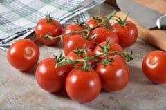 Tomates maduros da pérola na videira imagens de stock