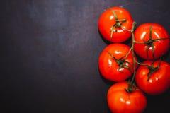 Tomates maduros em um fundo escuro fotos de stock royalty free