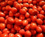Tomates maduros frescos Fotos de Stock Royalty Free
