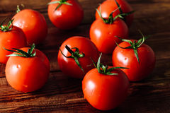 Tomates maduros frescos Imagem de Stock Royalty Free