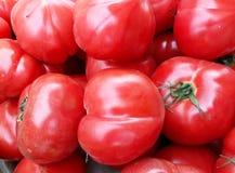 Tomates maduros frescos no contador Imagem de Stock Royalty Free