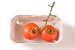 Tomates maduros orgânicos na bandeja biodegradável, saudável fotografia de stock royalty free