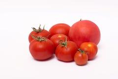 Tomates maduros rojos en el fondo blanco Foto de archivo