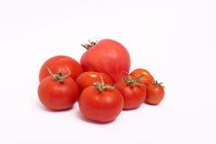 Tomates maduros rojos en el fondo blanco Imagen de archivo libre de regalías