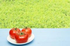 Tomates maduros rojos en la tabla de madera y en el fondo de hierbas verdes Copie el espacio Concepto natural del alimento Forma  Fotografía de archivo