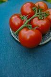 Tomates maduros rojos frescos Imágenes de archivo libres de regalías