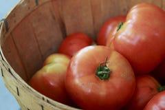 Tomates maduros rojos grandes en una cesta Imagen de archivo libre de regalías
