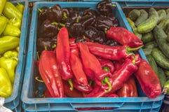 Tomates maduros rojos y pimientas coloridas a vender en el mercado de los granjeros en día del otoño en la caja plástica azul con Imagen de archivo
