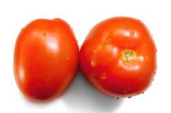 Tomates maduros vermelhos Fotografia de Stock