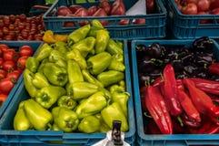 Tomates maduros vermelhos e pimentas coloridas a vender no mercado dos fazendeiros do dia do outono na caixa plástica azul com ou Imagem de Stock