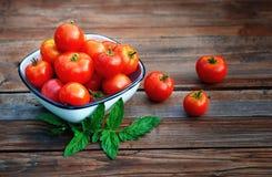 Tomates maduros, vermelhos em um copo Fotos de Stock Royalty Free