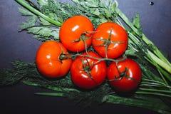 Tomates maduros vermelhos em um ramo, em um aneto verde e em umas cebolas em um fundo preto, vista superior, close-up fotos de stock royalty free
