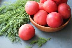 Tomates maduros vermelhos frescos e ervas frescas para a salada Fotografia de Stock