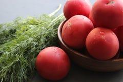Tomates maduros vermelhos frescos e ervas frescas para a salada Fotografia de Stock Royalty Free
