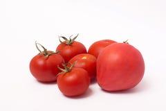 Tomates maduros vermelhos no fundo branco Imagem de Stock