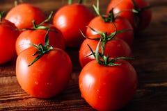Tomates maduros y rojos Imágenes de archivo libres de regalías