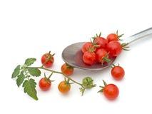 Tomates minúsculos de la pasa - de cosecha propia, orgánico No no todo perfecto Foto de archivo