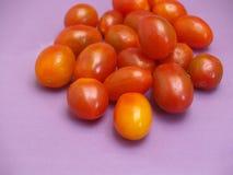 tomates miniatures Photo stock