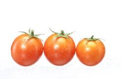 Tomates mojados. Foto de archivo libre de regalías