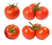 Tomates mojados y secos fijados Fotos de archivo libres de regalías