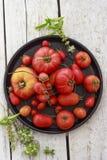 Tomates na bandeja redonda preta Fotografia de Stock